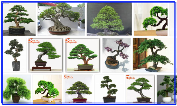 Fake Bonsai Trees for Sale - An Easy Way to Buy Fake Tree New*